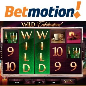 Qplaygames bingo betmotion games - 974030